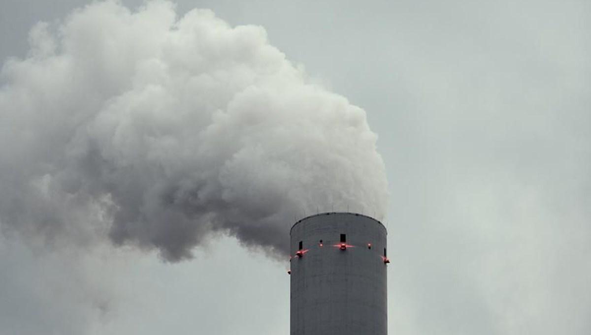 Avrupa'da hava kirliliği yılda 400 bin ölüme yol açıyor