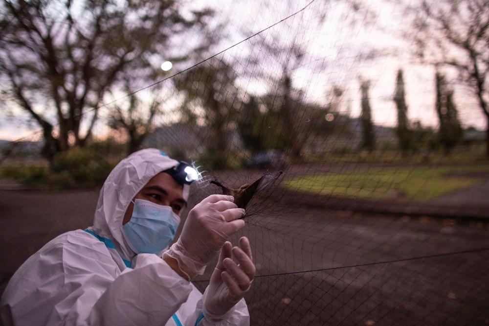 """""""Virüs avcıları"""" bir sonraki pandemiyi önlemek için gece gündüz çalışıyor - 5"""