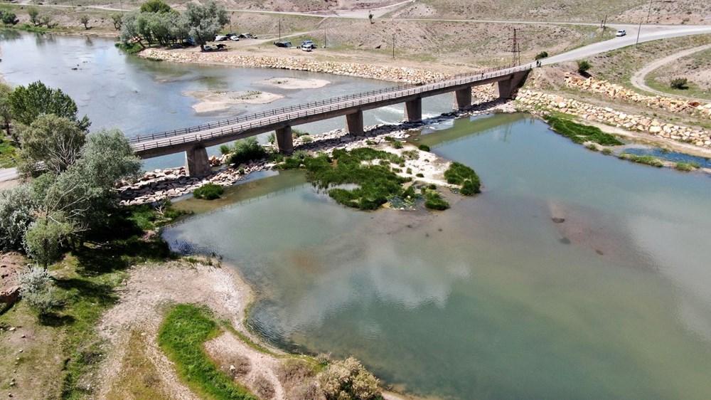 Türkiye'nin en uzun nehri Kızılırmak'ta toplu balık ölümleri - 8