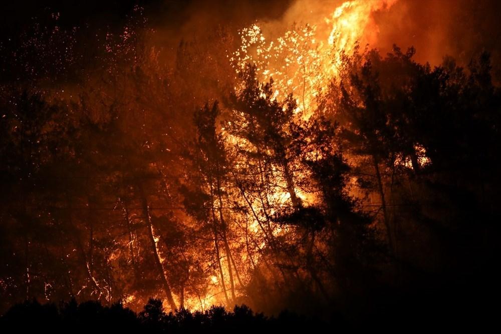 Antalya, Adana, Mersin, Aydın, Muğla, Osmaniye, Kayseri ve Manisa'da orman yangınları - 41