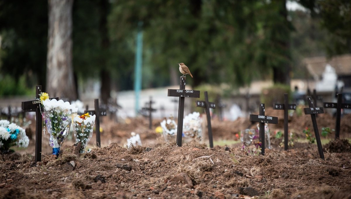 Epidemic in Argentina: Loss of life is increasing