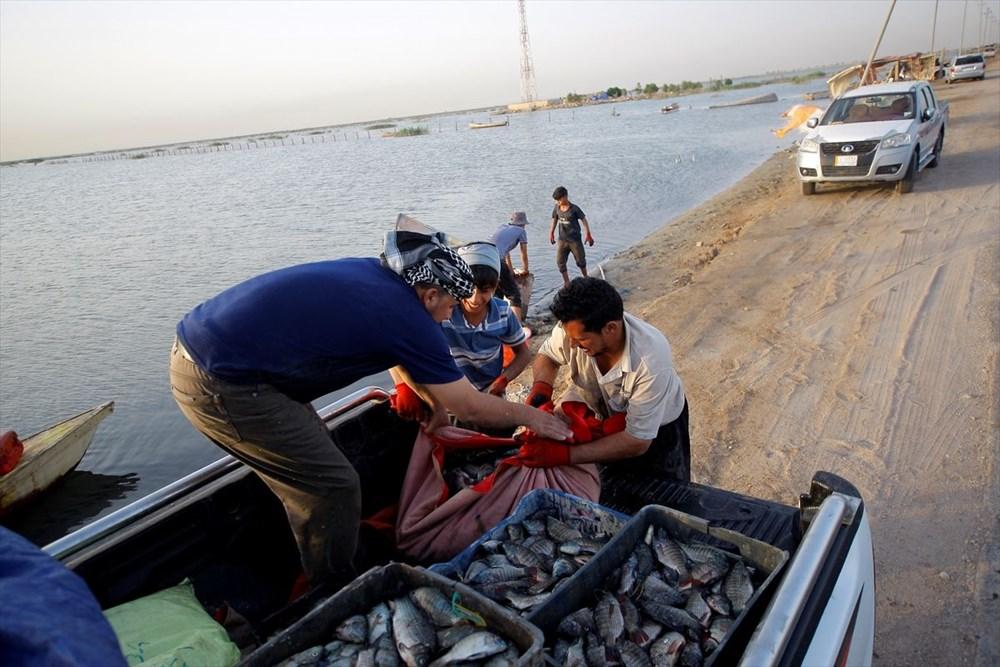 Necef Denizi: Kuraklığın ardından gelen mucize - 50