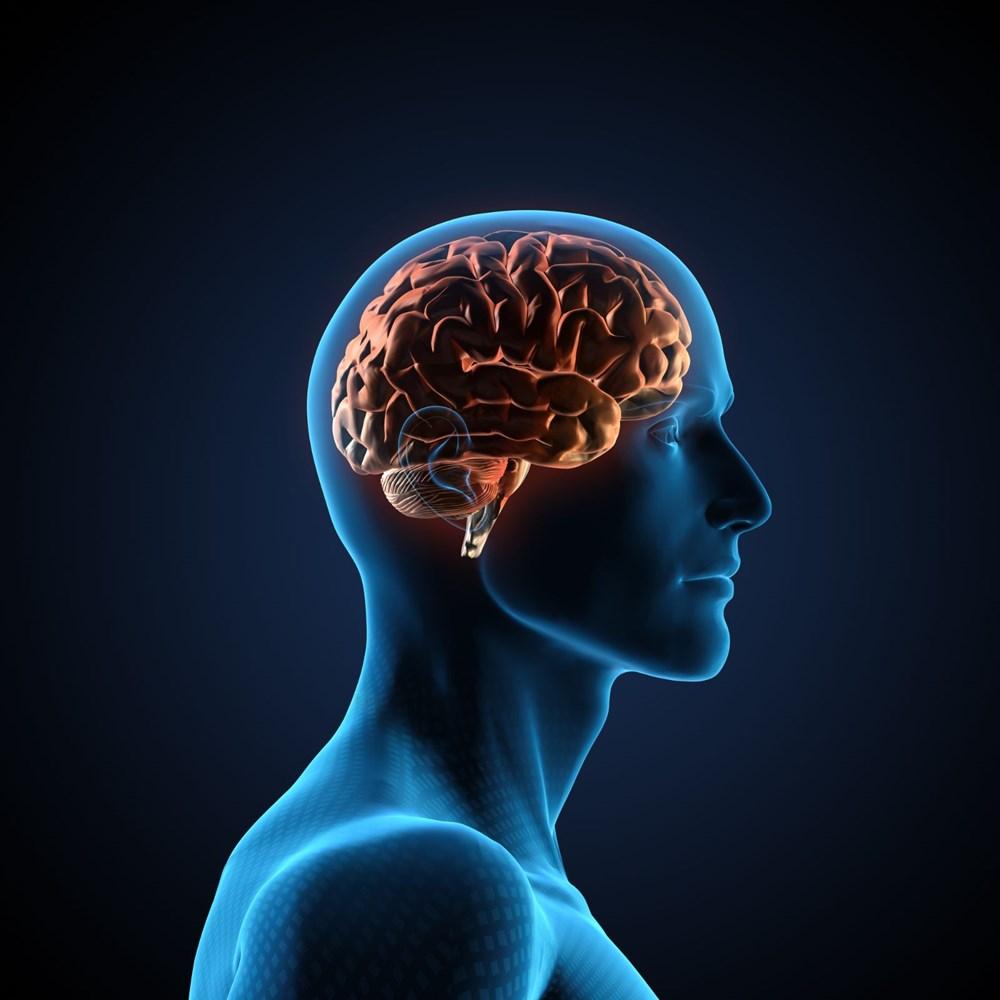 Sağlıklı beyin için 11 öneri - 1