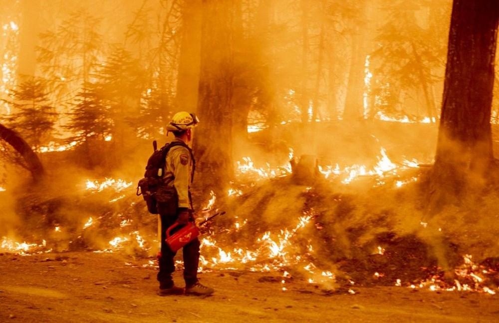 California'da orman yangınları evleri küle çevirdi - 4