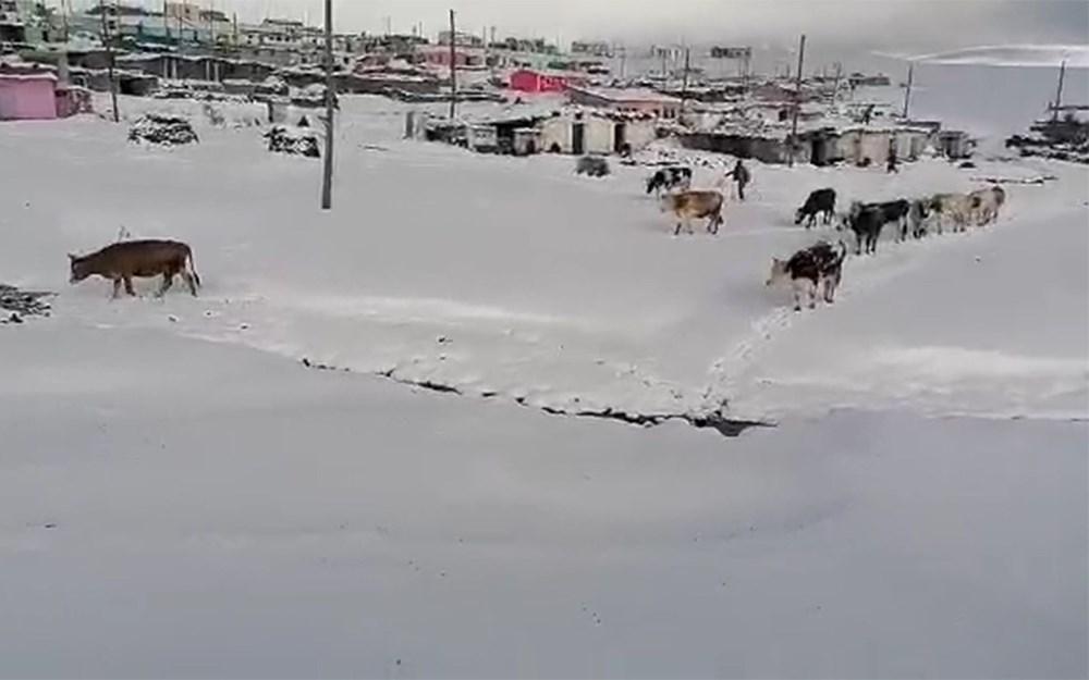 Kar etkili oldu: Yaylacıların dönüş hazırlıkları erken başladı - 11