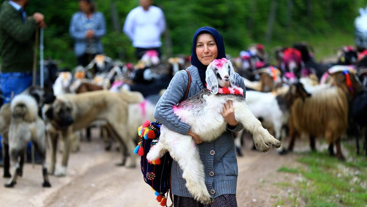 114 yıllık gelenek: 'Rengarenk' göç yolculuğu başladı
