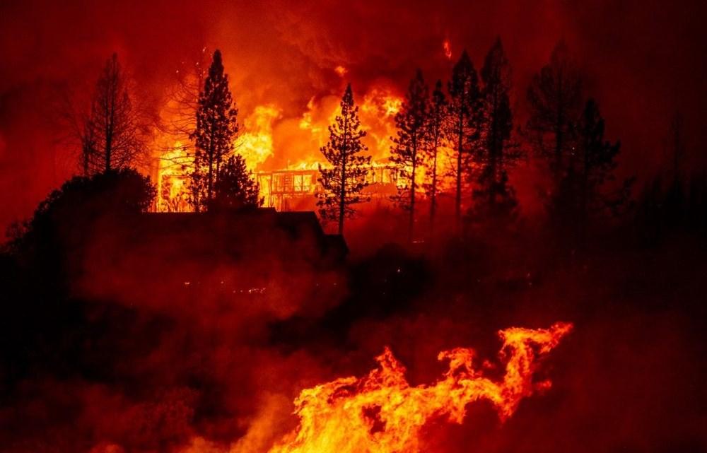 ABD'nin batısındaki orman yangınlarında ölü sayısı 15'e yükseldi - 4