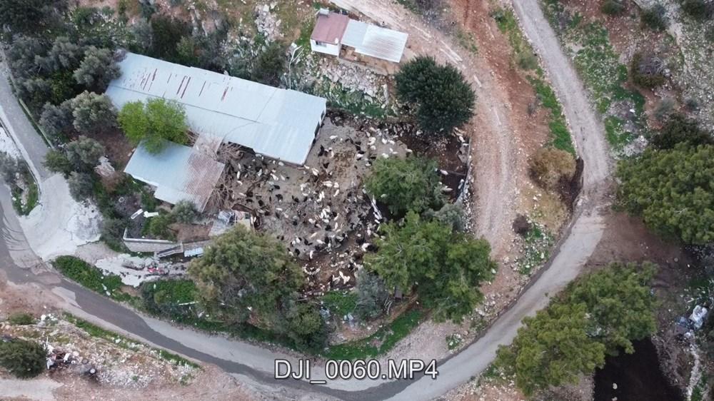 Bodrum'un drone'lu çobanı: Adım adım izliyor - 10