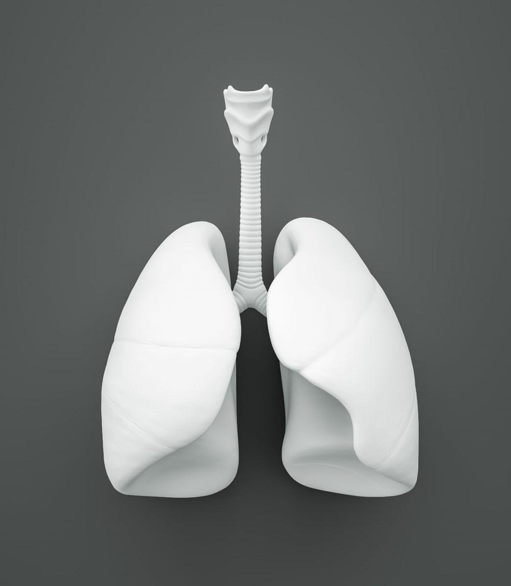 Covid-19 ilaç denemeleri: Yapay organ dönemi başlıyor - 5