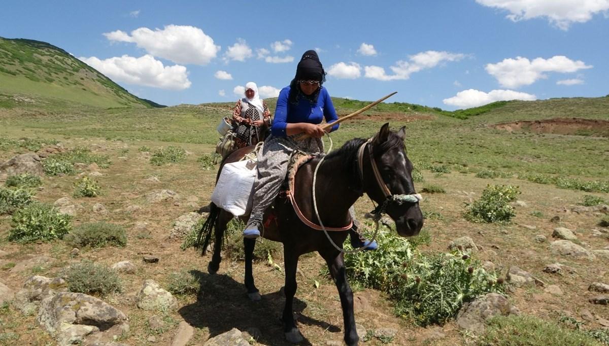 Berivanların at sırtında zorlu yolculuğu