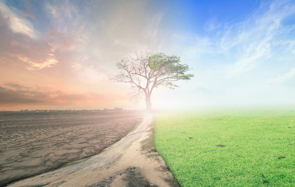 Küresel ısınmada kritik eşik çoktan aşıldı: Dünya adım adım sona yaklaşıyor - 6