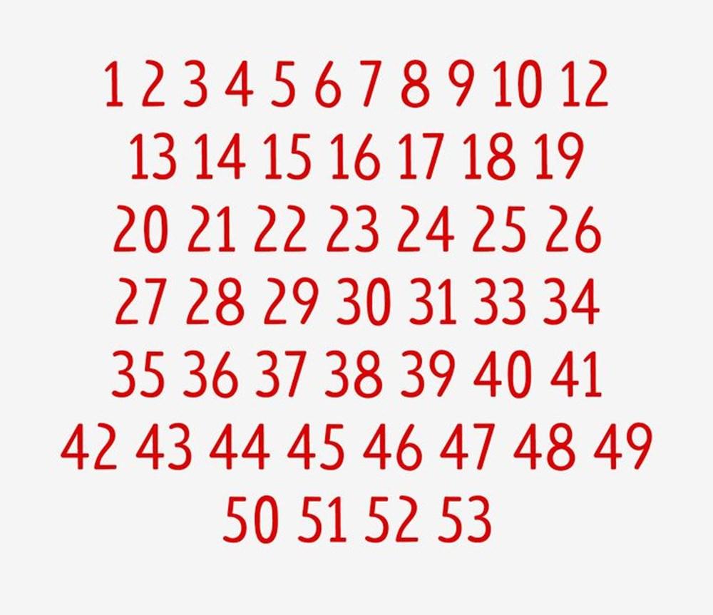 Dikkat testi: Resimdeki dört yapraklı yoncayı bulabilir misiniz? - 68