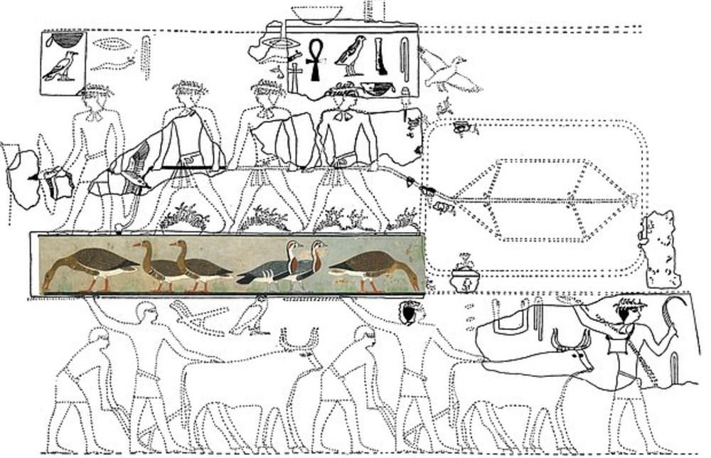 """Antik Mısır'ın """"Mona Lisa""""sı binlerce yıl önce soyu tükenen hayvanı gün yüzüne çıkardı - 3"""
