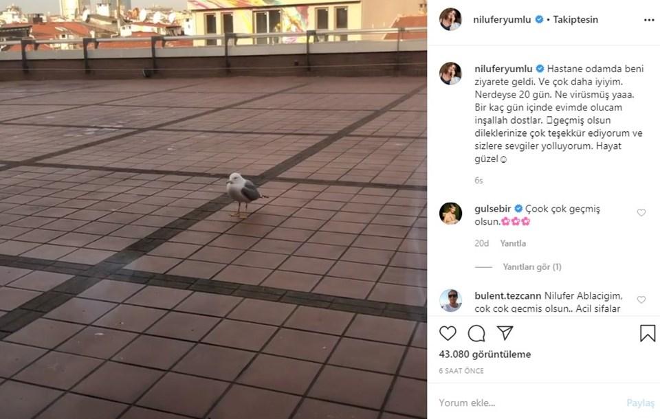 Başta Gülse Birsel olmak üzere sanatçı dostları Nilüfer'e geçmiş olsun mesajo yolladı