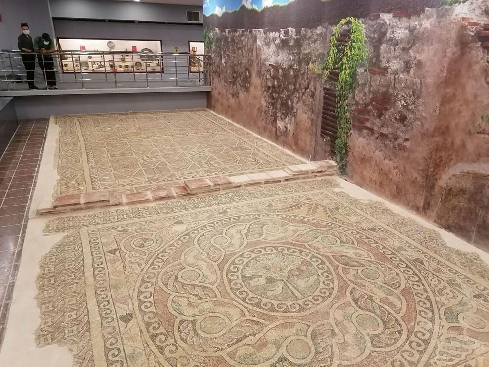 1800 yıllık elma mozaiği sergilenmeye başladı - 2