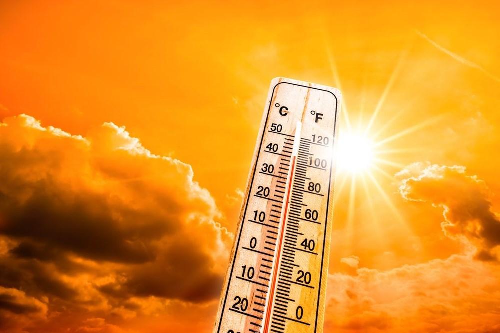 İklim krizi: 2020, Avrupa'nın açık ara en sıcak yılı oldu - 8