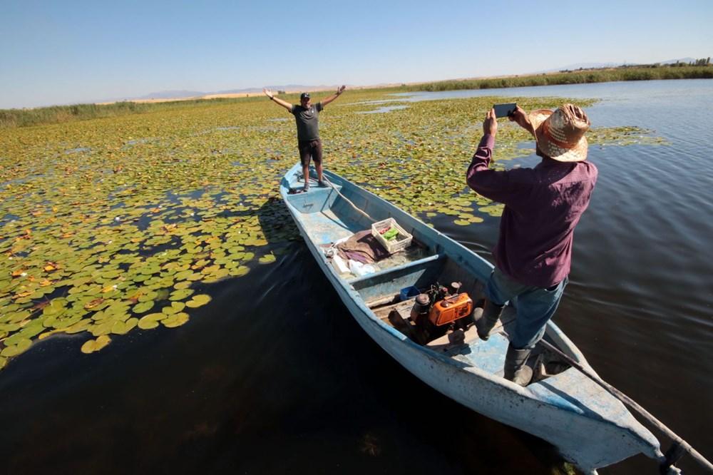 Türkiye'nin en büyük nilüfer bahçesi: Beyşehir Gölü - 4