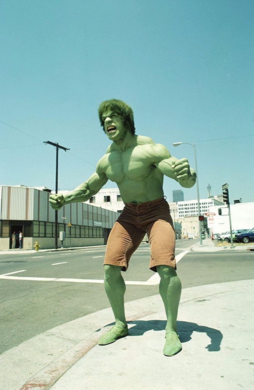 incredible hulk lou ferrigno - 736×1127