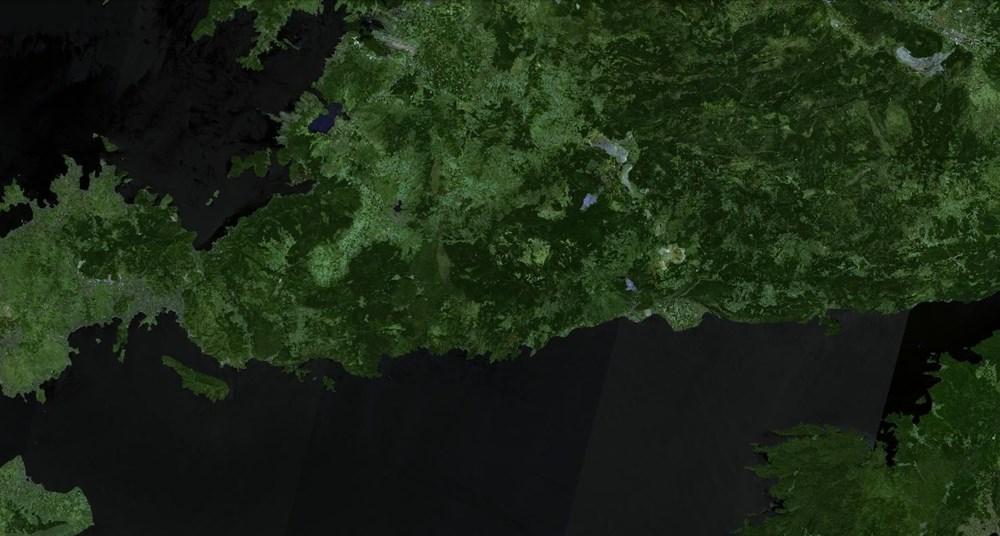 Orman yangınları uydudan böyle görüntülendi - 3