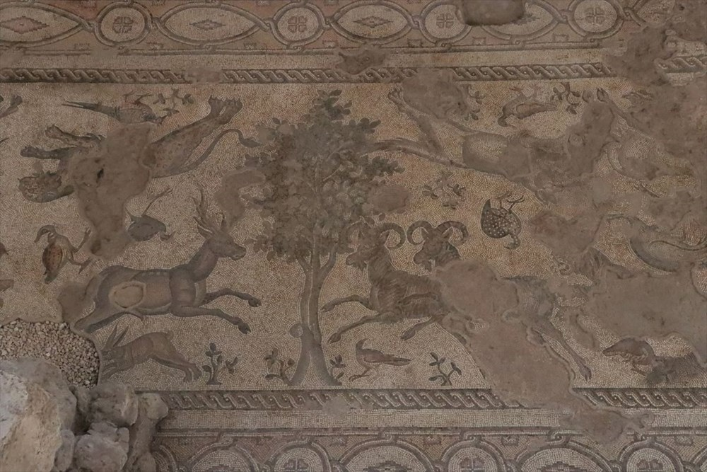 Hatay'da beş dönemin izlerini taşıyan Necmi Asfuroğlu Arkeoloji Müzesi ziyaretçilerini zaman yolculuğuna çıkarıyor - 23