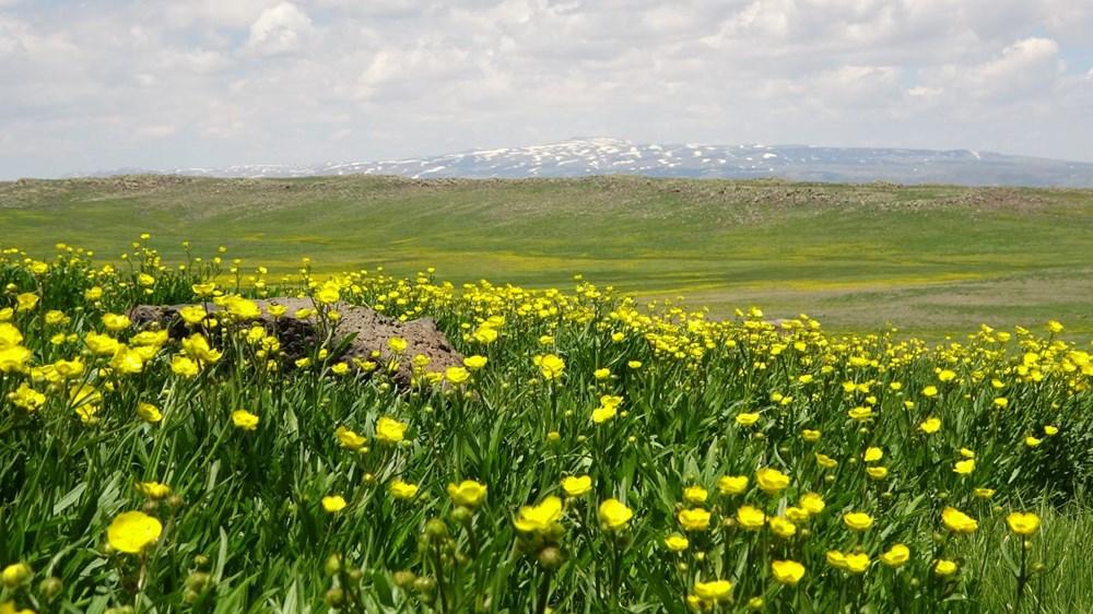 Muş'ta Hamurpet Gölleri görenleri doğasıyla mest ediyor - 14