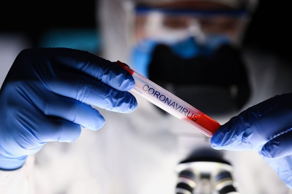 Corona virüsün mutasyona uğrama hızı oldukça düştü (Daha fazla bulaşıcı olduğu iddiası doğru değil) - 8
