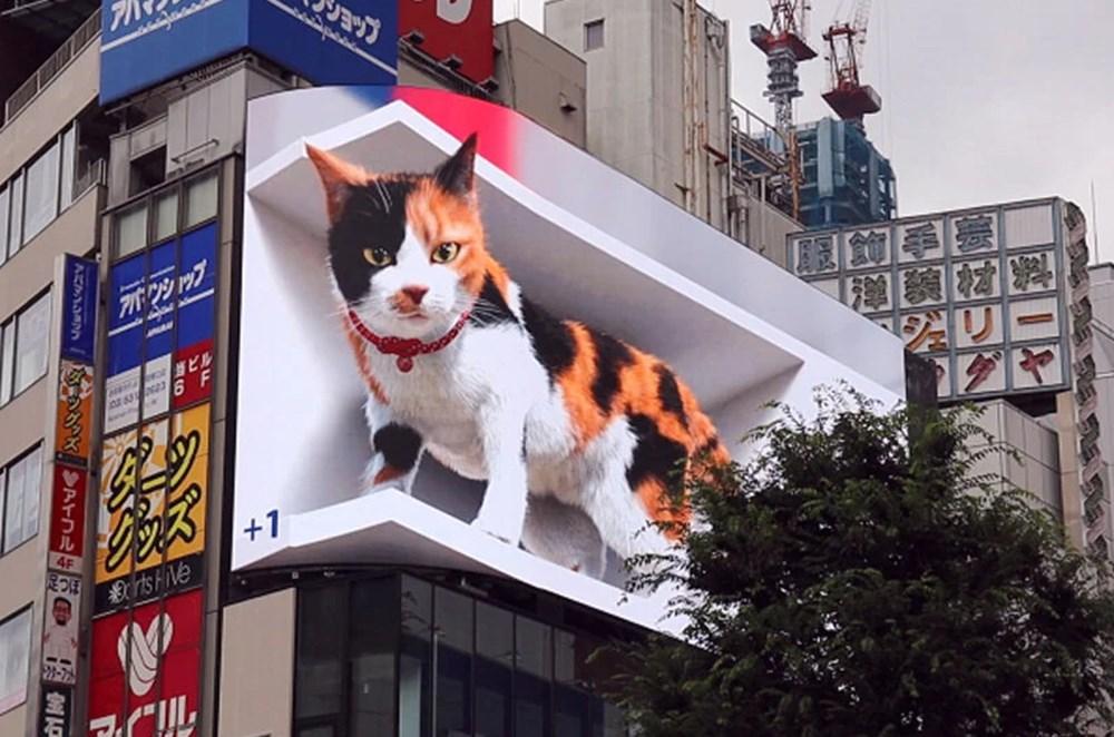 Tokyo'nun yeni misafiri 3 boyutlu kedi: Şehri izliyor ve halkı selamlıyor - 2