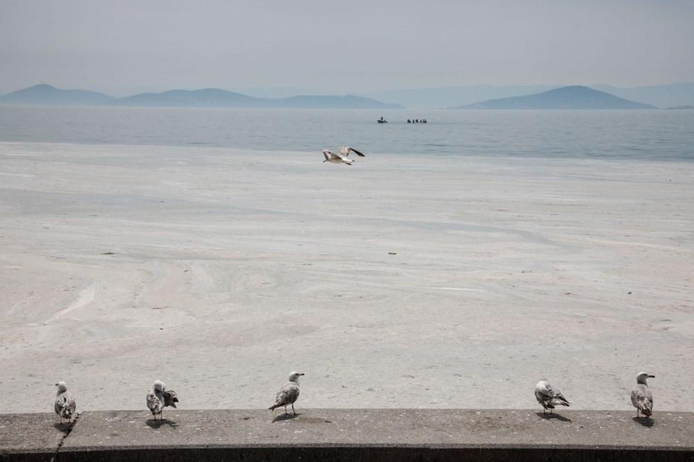 İstanbul'un sahilleri müsilajla doldu: 95 yıldır böyle bir şey görmedim - 13