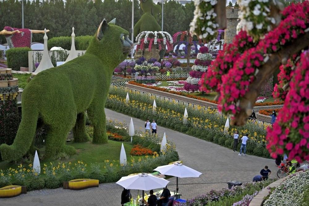 Dünyanın en büyük çiçek bahçesi Dubai'de açıldı - 4