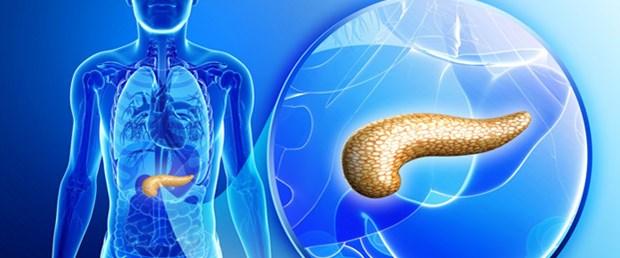 pankreas ile ilgili görsel sonucu