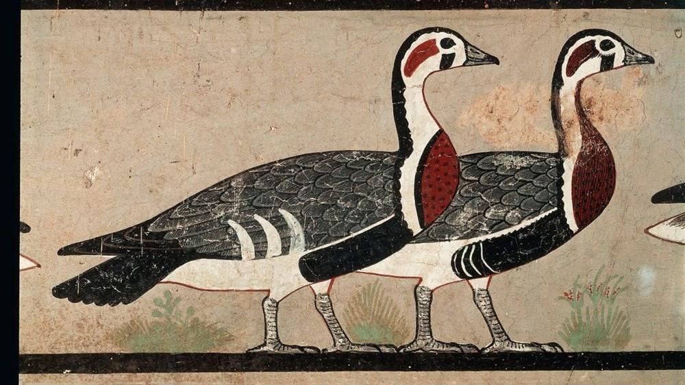 """Antik Mısır'ın """"Mona Lisa""""sı binlerce yıl önce soyu tükenen hayvanı gün yüzüne çıkardı - 8"""