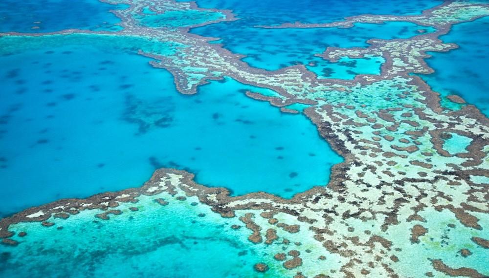 Büyük Set Resifi iklim değişikliği nedeniyle 2025'te yok olmaya başlayacak - 3