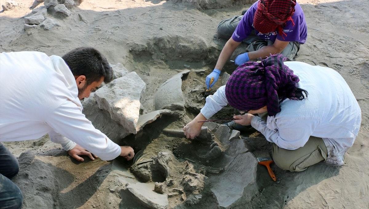 Eskişehir Küllüoba Höyüğü'nde 5 bin yıllık küp mezarlarda çocuk iskeletleri bulundu