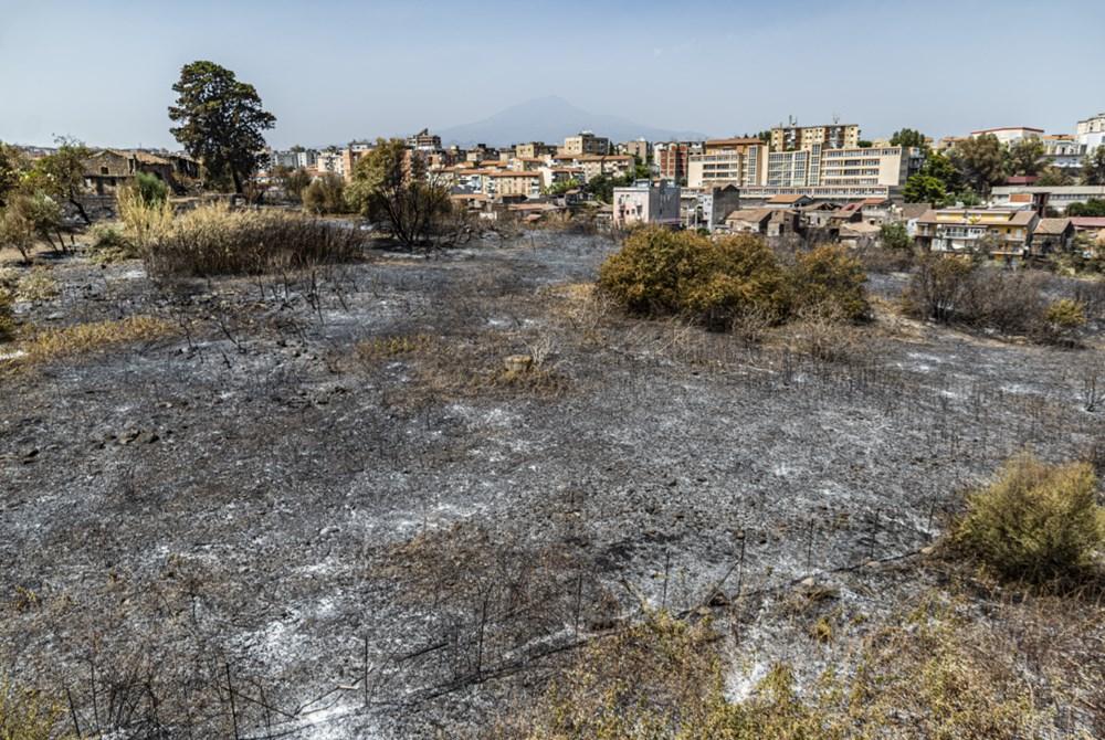 Akdeniz alev aldı: Yunanistan ve İtalya'da orman yangınları sürüyor - 15