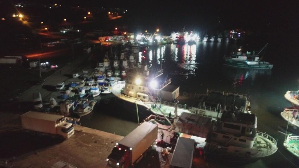 Balıkçılardan hamsi avının serbest olduğu İğneada'ya akın - 1