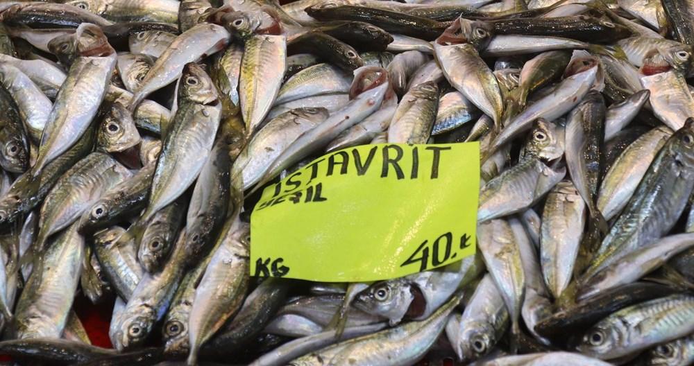 Müsilaj balıklarda zehir etkisi yaratır mı? Uzmanı yanıtladı - 4
