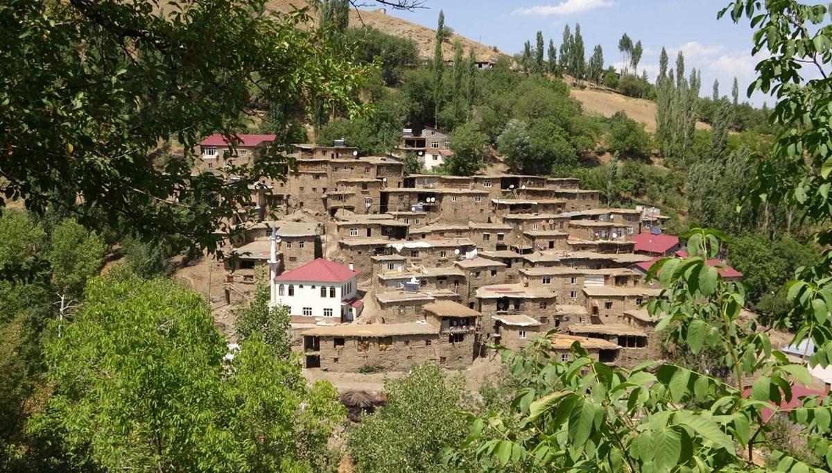 Hizan'ın 300 yıllık taş evleri görenleri kendine hayran bırakıyor