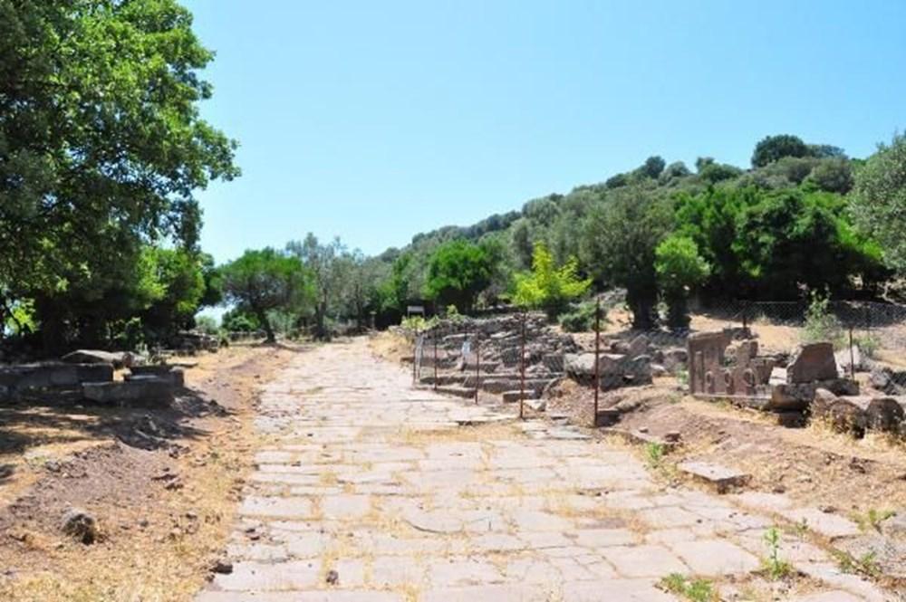 Aigai Antik Kenti'nde 3 bin mezar: Ortalama yaşam 40-45 yıl - 8