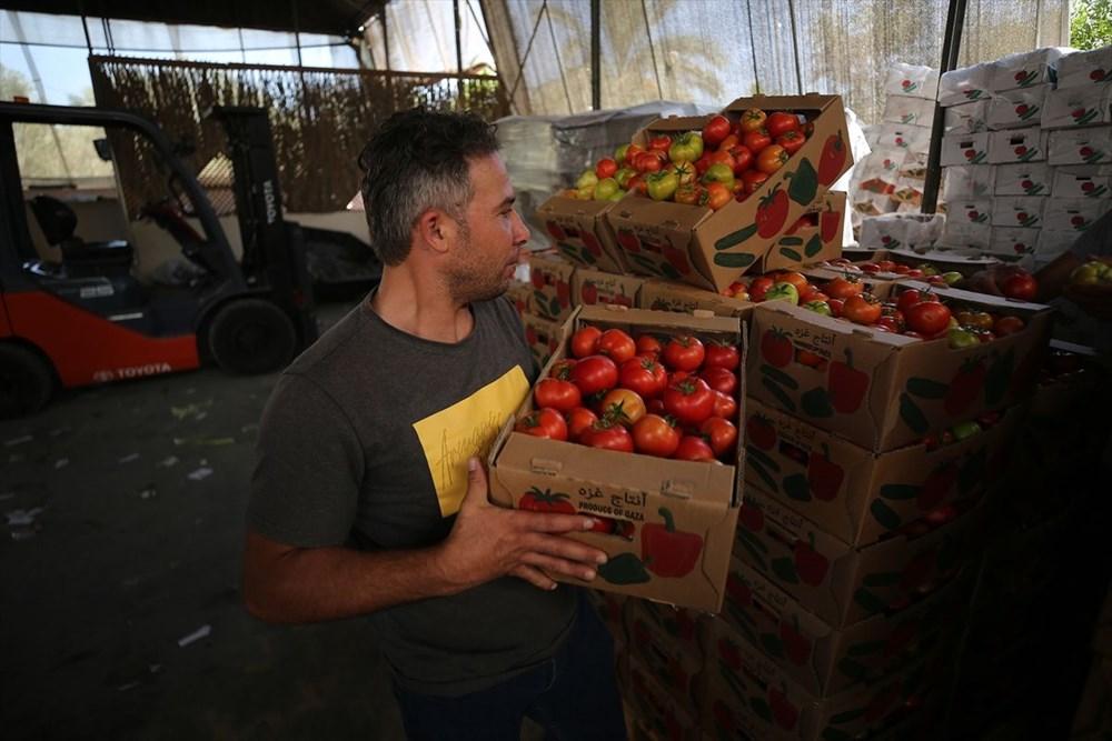 İsrail'in kararına tepki: Domates sapını tehdit gördüler - 9
