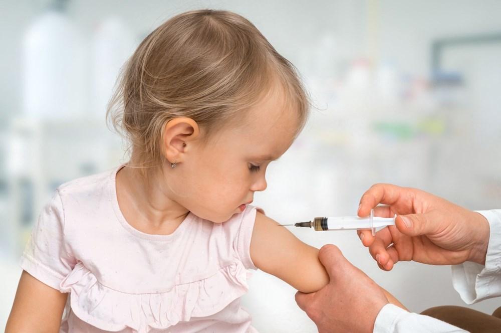 Hangi hastalık kaç puan ediyor? 10 soruda grip aşısı - 10