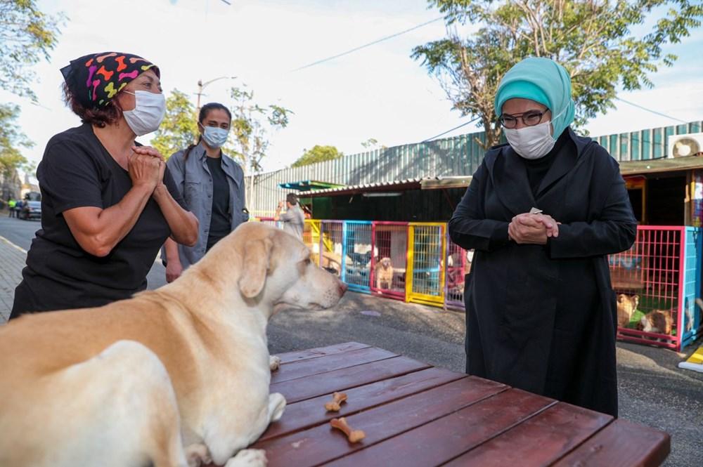 Barınağa kedi ve köpekler için mama, yorgan ve battaniye desteğinde bulunan Erdoğan, can dostlarlayakından ilgilendi.