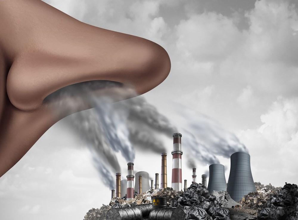Sentetik kimyasallar her yerde: Bilim insanlarından erken ölüm uyarısı - 10