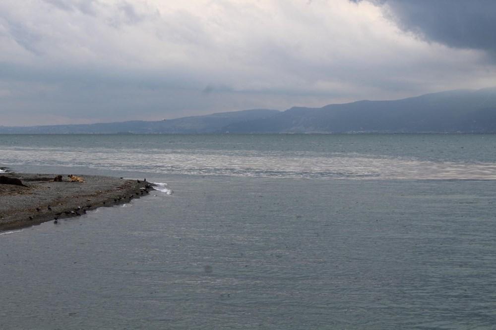 Deniz salyası İzmit Körfezi'ne geri döndü - 2