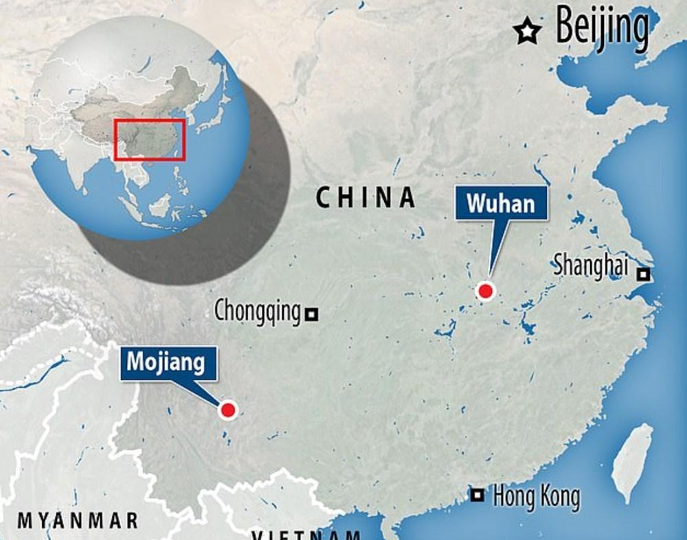 """""""Yeni tip corona virüs yedi yıl önce Çin'deki bir madende ortaya çıktı"""" - 2"""