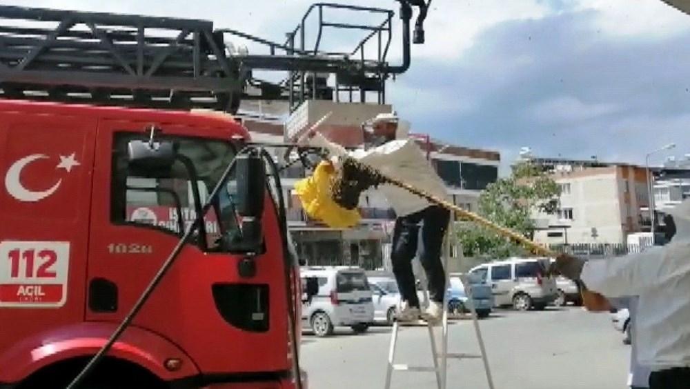 Hastanede panik: Acil servisi arılar bastı - 7