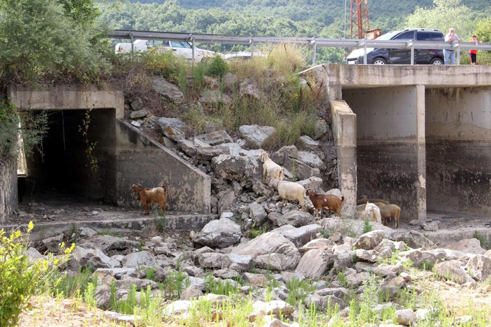 İstanbul'un su ihtiyacını karşılayan Trakya'daki barajlar kurudu - 14
