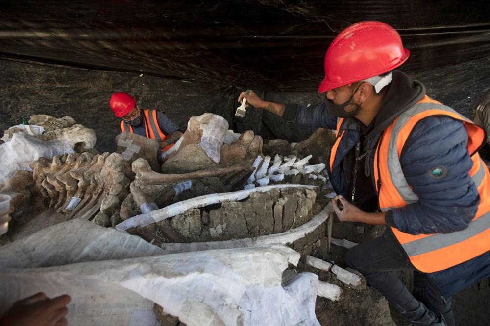 Meksika'daki sit alanında bulunan mamut fosillerinin sayısı 200'e yükseldi - 6