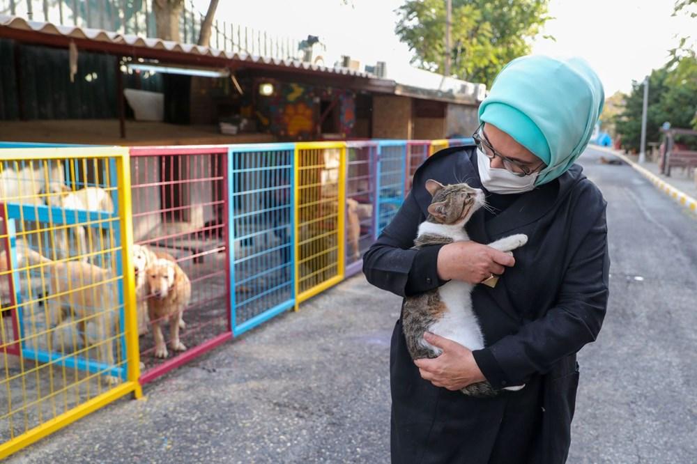 Emine Erdoğan, engelli köpek 'Leblebi'yi sahiplendi - 3