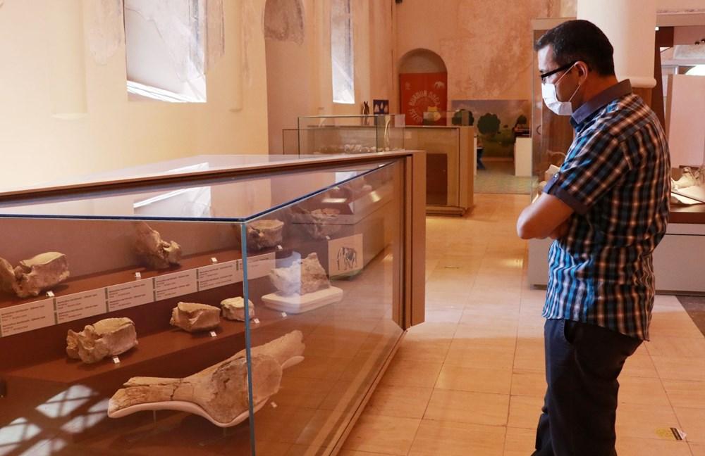 İki milyon yıllık fosiller Burdur Doğa Tarihi Müzesi'nde sergileniyor - 4
