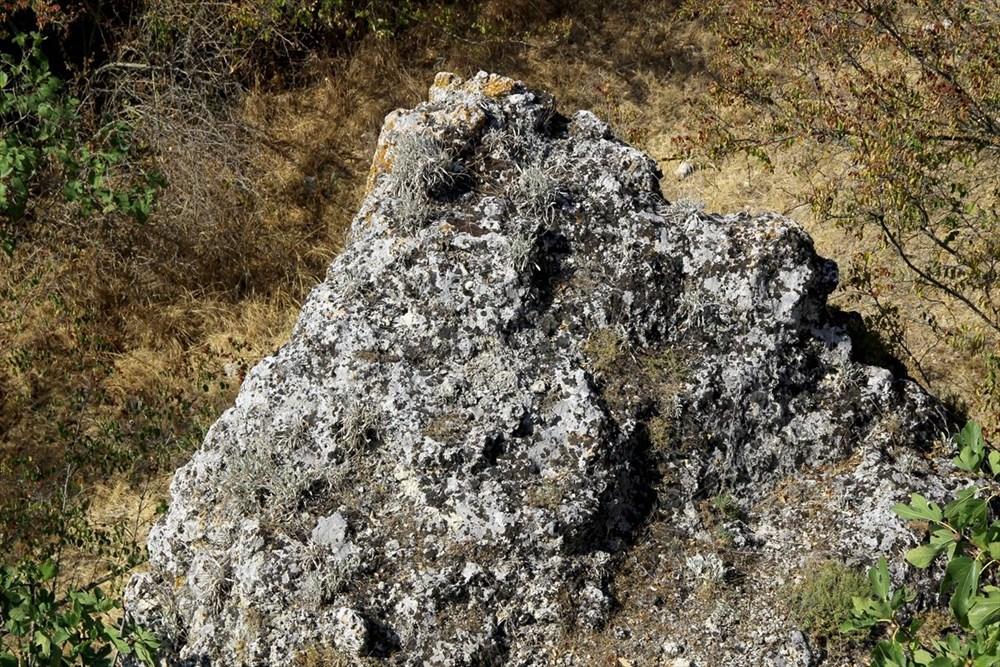 """Traklara ait tarihi kaya sunağında""""güneş diski"""" bulundu - 6"""